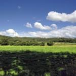 Landschaft 24mm 1/160sec ISO200 f/16