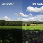 RAW untouched - RAW edit